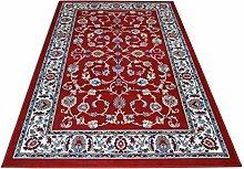 Top Preis Guenstig Teppich klassisch Orientdesign Persische Teppich Living ROYAL SHIRAZ 2079-RED 160x230