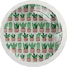 Topfpflanzen grünes Kaktus-Muster rund Kristall