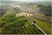 Toskana Landschaft Luftbild Zypressenbaum