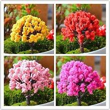 Treasure-House 4 PCS Miniatur Baum Pflanzen Zubehör Puppenhaus DIY Craft Fairy Garden Ornamen