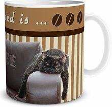TRIOSK Tasse Katze All you need is Coffee, Geschenk Arbeit Büro Frauen Männer Kollegen Freunde, Weiß Braun, 300 ml