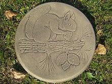 Trittstein Eichhornchen (Squirrel) || Weitere