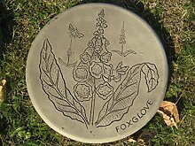 Trittstein Fingerhut (Foxglove) || Weitere