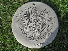 Trittstein Glockemblume (Bluebell) || Weitere