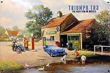 Triumph TR3blau Auto. Die britischen, Laufwerk im Land und die Fun auf Rädern. Bild Set in 50- oder 60's at eine Garage. Für Haus, Home, Garage, Kneipe oder Bar. Metall/Stahl Wandschild, stahl, 20 x 30 cm