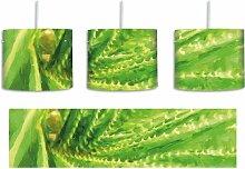 Trommel-Pendelleuchte 1-flammig Aloe Vera Pflanze