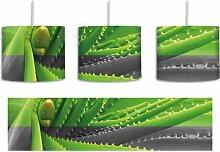 Trommel-Pendelleuchte 1-flammig Grüne Aloe Vera