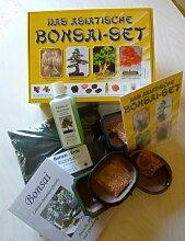 Tropica - Set - Bonsai Asiatisch - Samen von