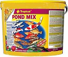 Tropical Pond Mix, 1er Pack (1 x 21 l)