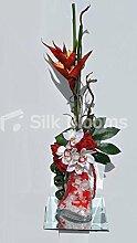 Tropical rot Heliconia, Rose, Fuchsschwanz- und