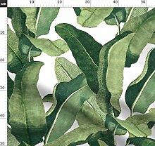 Tropisch, Blätter, Tapete, Stoff, Bananenblatt,