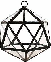 Tubayia Cube Glas Pflanze Terrarium Sukkulente