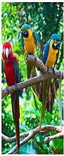 Türaufkleber, 3D-Tapete mit Papageienmuster,