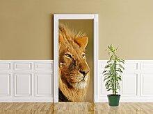 Türaufkleber - Afrikanischer Löwe - 90 x 200 cm