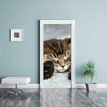 Türaufkleber Baby-Katze, rote Bettdecke