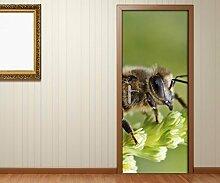 Türaufkleber Biene grüner Stängel Insekt Tür Bild Türposter Türfolie Türtapete Poster Aufkleber 15A093, Türgrösse:80cmx200cm