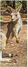 Türaufkleber Känguru Australien Tier Wald Tür