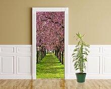 Türaufkleber - Kirschblüten - 90 x 200 cm -