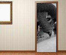 Türaufkleber schlafende Katze Kätzchen mit