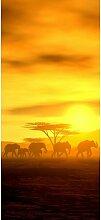 Türaufkleber Sonnenuntergang mit Elefanten