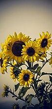 Türposter Sonnenblume 87x200cm Türtapete Natur Blüte Pflanze gelb 857tp