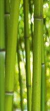 Türtapete Bambus TT003 90x200cm Tapete China Asia