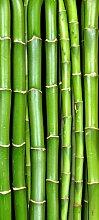 Türtapete Bambuswand TT048 90x200cm Tapete Asien