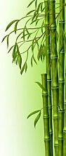 Türtapete Bambuszweige TT348 90x200cm Tapete Asia Natur Grün
