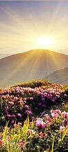 Türtapete Bergrücken im Sonnenschein TT395