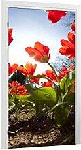 Türtapete Blumenbeet B x H: 101cm x 200cm von Klebefieber®