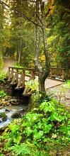 Türtapete Brücke im Wald TT292 90x200cm Tapete