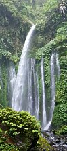 Türtapete Dschungel Wasserfall TT113 90x200cm Natur Dschungel Tapete Wasserfall