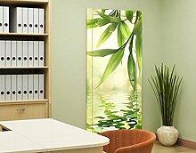 TürTapete Green Ambiance I Tapete Grün Wasser Pflanze Blätter Blatt, Größe:221cm x 81cm