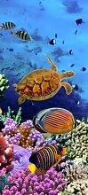 Türtapete Korallenriff voller Leben TT367