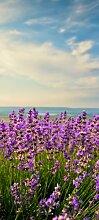 Türtapete Lavendel TT304 90x200cm Tapete