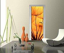 Türtapete Pusteblume Orange Tapete Kunstdruck Türbild M0390   70 x 200cm (B x H)   Dekorfolie selbstklebend