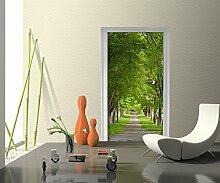 Türtapete Sommerallee Tapete Kunstdruck Türbild | 70 x 200cm (B x H) | Dekorfolie selbstklebend
