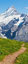 Türtapete Sommerwiese Alpen TT258 90x200cm Tapete
