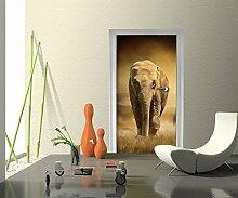 Türtapete Steppenelefant Afrika Tapete Kunstdruck Türbild M0246 | 100 x 200cm (B x H) | Papier