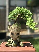 Tuina Bonsai-Schale Baby Groot, Stifte- und