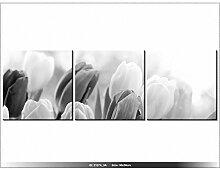 TULIPES - TABLEAU IMPRIME MODERNE - DECO - NEW DESIGN - ABSTRAIT
