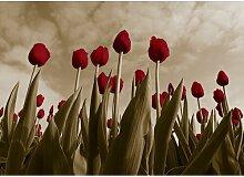 Tulips, Grafikdruck East Urban Home Größe: 42,8
