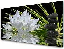 Tulup Glas Küchenrückwand – 100x50 cm