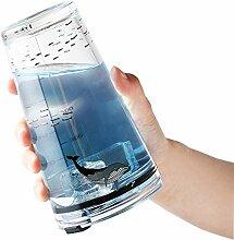 Tumblers Glas-Wasserflasche und Deckel mit