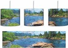 Tuolumne River Yosemite National Park Pinsel