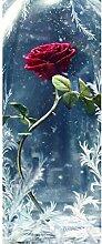 Turaufkleber Türtapete 3D Red Rose Vase Bild