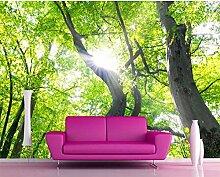 TV-Wandtapete für Wohnzimmer 3D-Tapete Parede