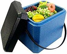 TXX Auto Kühlschrank-Kühlbox 21L Tragbare