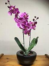 UK-Gardens Großer Rosa Orchidee Künstlicher Eingepflanzt Pflanze mit Seidenstoff Blumen in einem Rander Schwarz Übertopf - Büro oder Haus Gebrauch