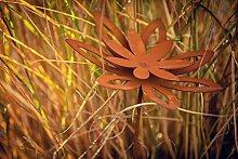Unbekannt Blume Blüte Margerite auf Stab Rost